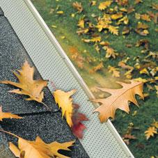 Alurex Leaf protection